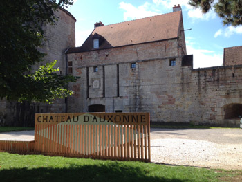 Chateau Louis XI 01