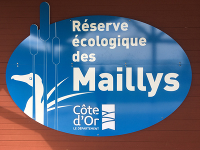 Reserve Maillys 04